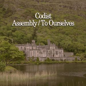 Codist - Assembly