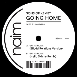 Sons Of Kemet - Going Home (Hello Skinny Remix)