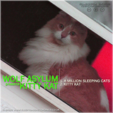 Wolf Asylum - Kitty Kat (Sleepy Bass Recordings)