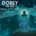 Dorey The Wise - Dory The Wise 'Brave New Light'