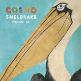 Cosmo Sheldrake - Rich (Edit)