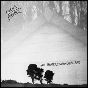 Milo's Planes - Two Feet In a Crowd