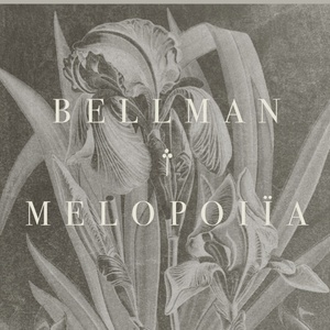 Bellman - Counting corners