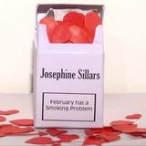 Josephine Sillars + The Manic Pixie Dreams - February Has A Smoking Problem