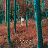 Sunflower Bean - I Hear Voices