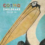 Cosmo Sheldrake - Rich