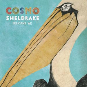Cosmo Sheldrake - The Fly