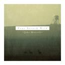 Jake Morrell  - Fear Struck Wild