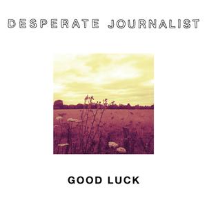 Desperate Journalist - Perfect Health (Radio Edit)