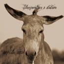 sleepwalker's station - reptile skin
