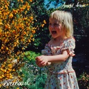 Ever Hazel - Small, Brave