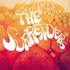 The Surrenders - Sun Song