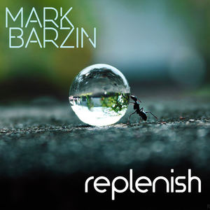 Mark Barzin - Bright Sized Life