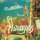 Flamingods - Rhama (Radio edit)