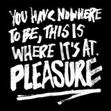 Formation - Pleasure