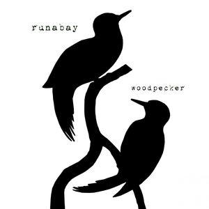 runabay - Woodpecker