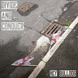 Hey Bulldog - Divide And Conquer