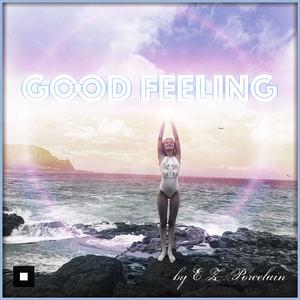E.Z.Porcelain - Good Feeling (acapella)