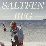Saltfen