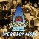 Northern Nightlights - We're Not Alone