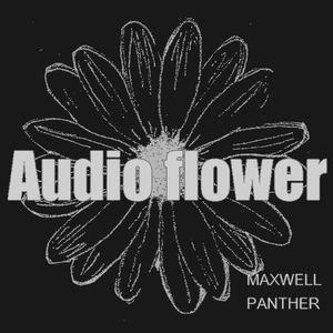 Daniel Bligh - Audio Flower