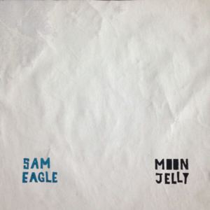 Sam Eagle - We Live In a Desert