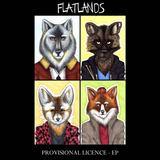 Flatlands - Provisional Licence