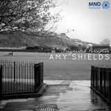 Amy Shields - Fragmented Perception