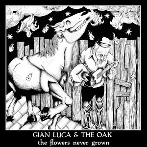 Gian Luca & The Oak - Round and Round