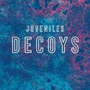 Juveniles - Decoys