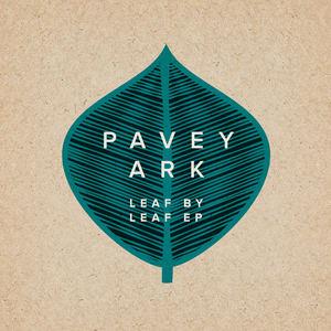 Pavey Ark - Hidden Hills