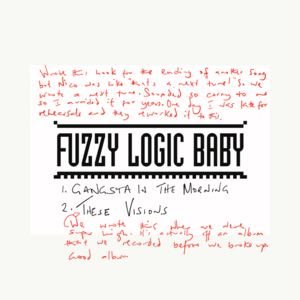 FuzzyLogicBaby - These Visions