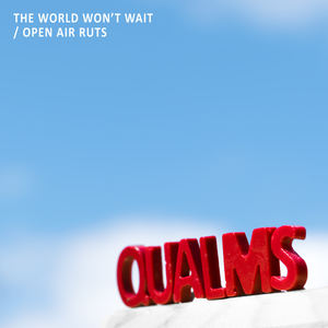 Qualms - The World Won't Wait