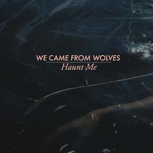 We Came From Wolves - Falling