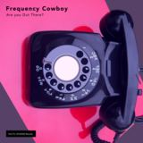 Frequency Cowboy - Are You Out There