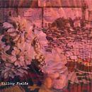 Gladboy - Killing Fields