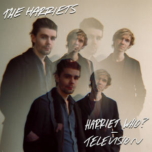 The Harriets - Television