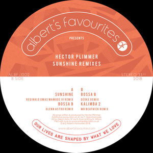 Hector Plimmer - Kalimba 2 (Mr Beatnick Remix)