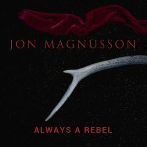 Jon Magnusson - I'm not the only one