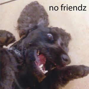No Friendz