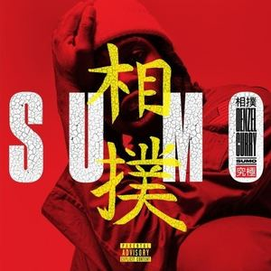 Denzel Curry - SUMO