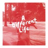 Joseph Lawrenson - A Different Life