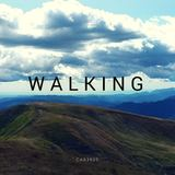 car3939 - Walking