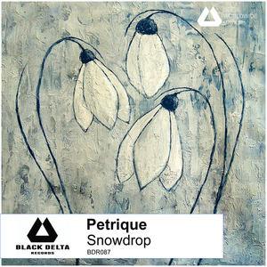 Petrique -  Immersion