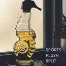 Remember Sports - Remember Sports / Pllush Split