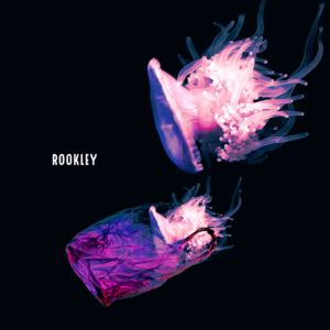 Rookley - Straight