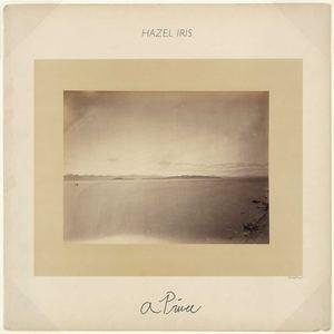 Hazel Iris