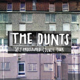 Self Proclaimed Council Punk (The Dunts)