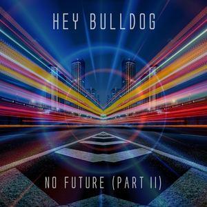 Hey Bulldog - No Future (Part II) - Radio Edit