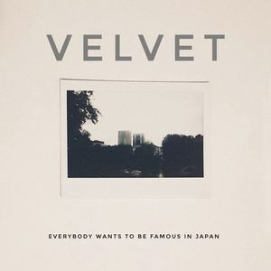 Velvet - Honey
